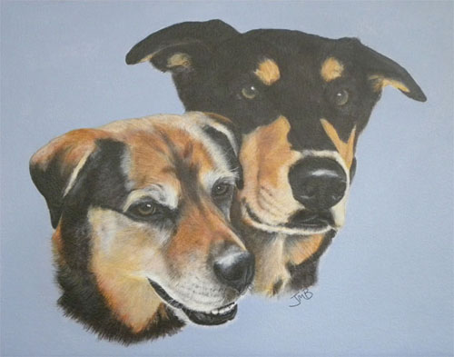 Portrait of Mixed Breed Dogs - Brandy and Stew