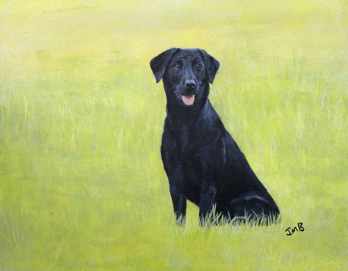 Black Lab, Furai