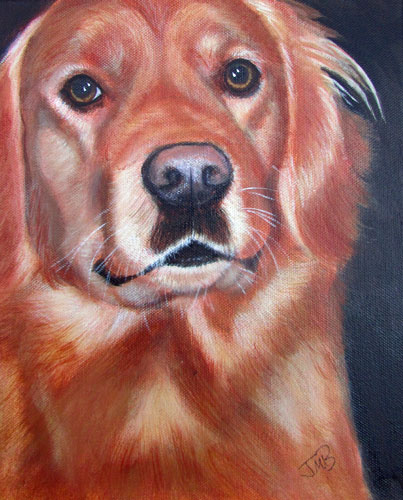 Dog Portrait of Tosh